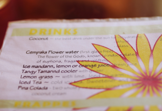 Yellow flower cafe the travelling light map mightylinksfo